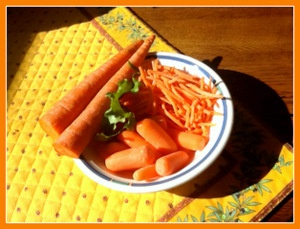 carrots-for-dogs