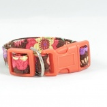 Cocao Flower with Orange Hardware Dog Pet Collar