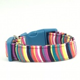 Sassy Multi-Stripes Dog Pet Collar