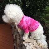 HIPPY DOG Tie Dye Peace Shirts