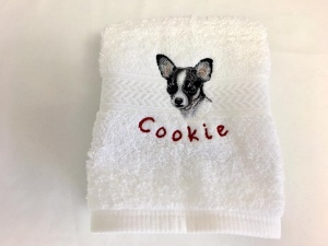 Best pet store selling pet clothes and accessories in USA 16