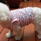 SASSY POOCH Ruffled Pink and Blue Swimsuit Top for Dogs