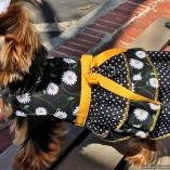 Bella & Friends The Daisy Mae Dress