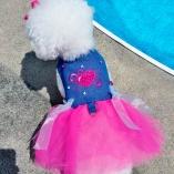 Bella & Friends Couture Denim Tutu Dress for Luxury Pets