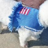 Totally Distressed Patriotic Stars n' Stripes Denim Vest Jacket for Pet Dogs