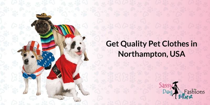 Get Quality Pet Clothes In Northampton, USA