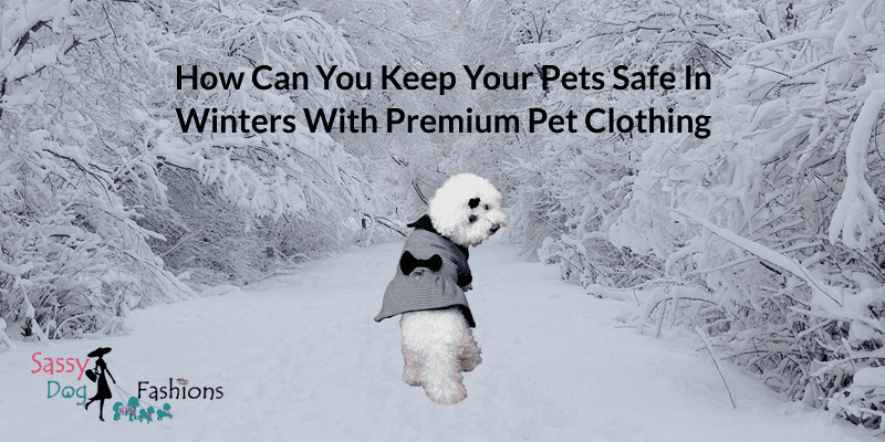 How Can You Keep Your Pets Safe In Winters With Premium Pet Clothing
