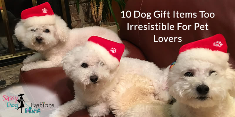 10 Dog Gift Items Too Irresistible for Pet Lovers
