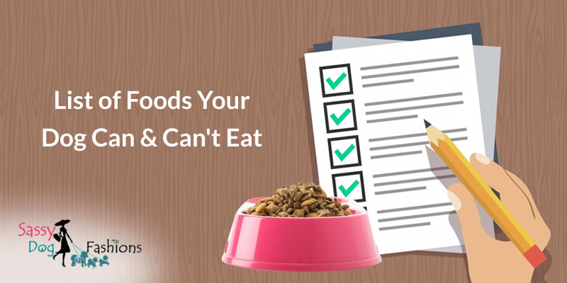 List of Foods Your Dog Can & Can't Eat