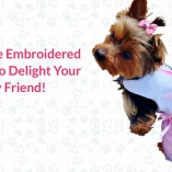 How to use Embroidered Pet Wear to delight your furry friend