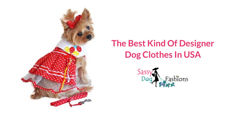 The Best Kind of Designer Dog Clothes in the USA
