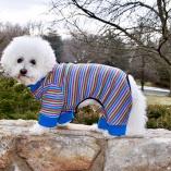 Sassy Dog Sleeper Dog Pajamas Jumper in Multi Stripes