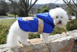 NATURE DOG Waterproof OUTERWEAR for Dogs in Royal Blue with Multi-color Links